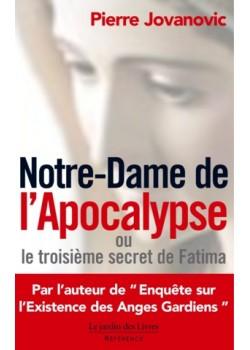 Notre-Dame de l'Apocalypse...